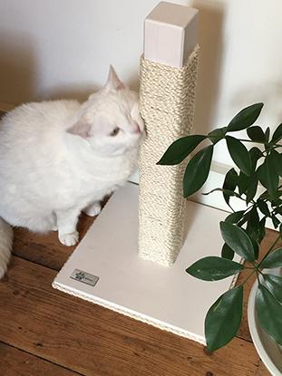 Tiragraffi per gatti in legno robusto