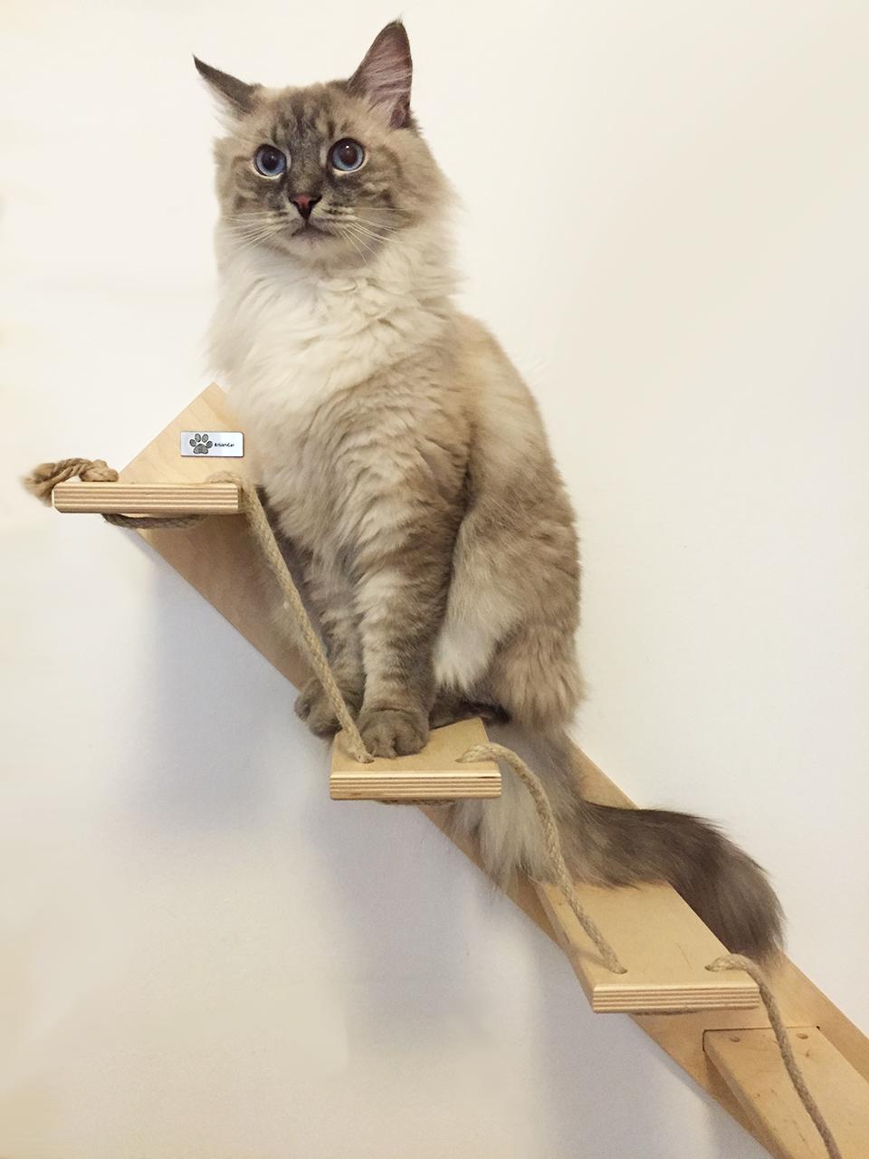 Scaletta per gatti artigianale in legno for Mensole per gatti ikea