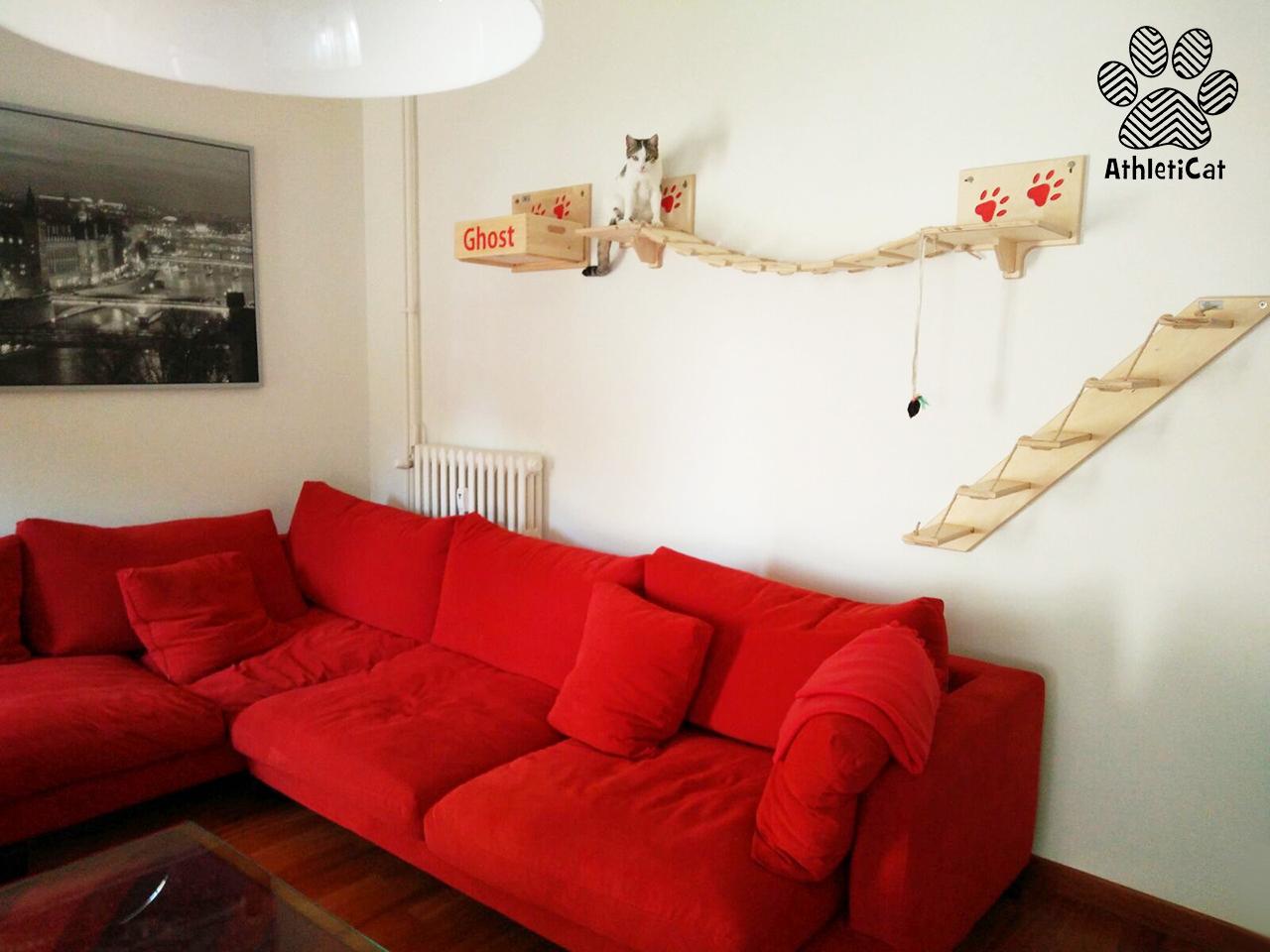 Palestra per gatti in legno - Creare una palestra in casa ...