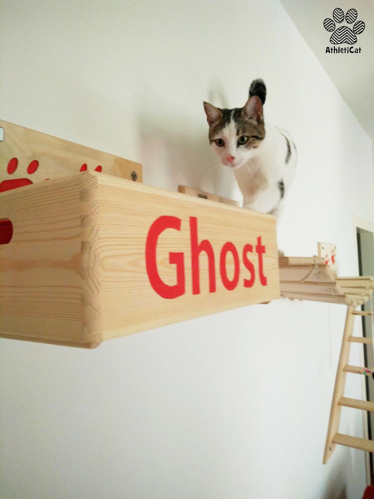 Palestra per gatti in legno for Arredamento per gatti