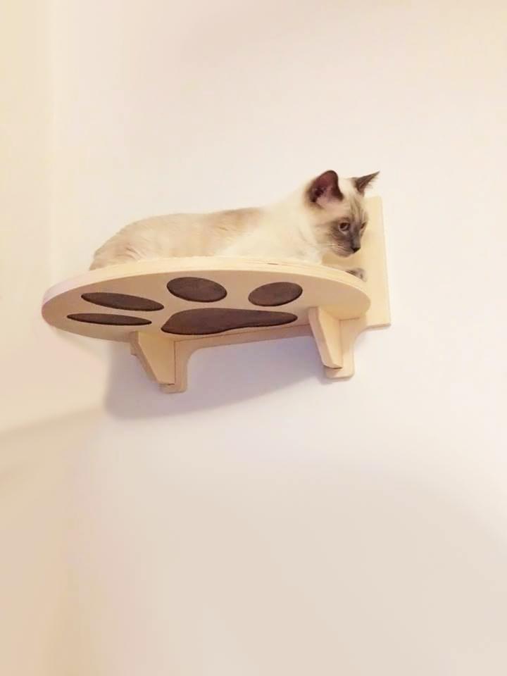 Palestra per i gatti in legno artigianale athleticat