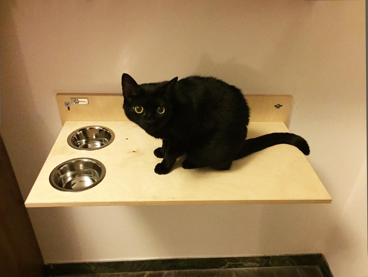 Mensola con ciotole per gatti-foto1
