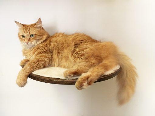 Mensola per gatti zampa incisa