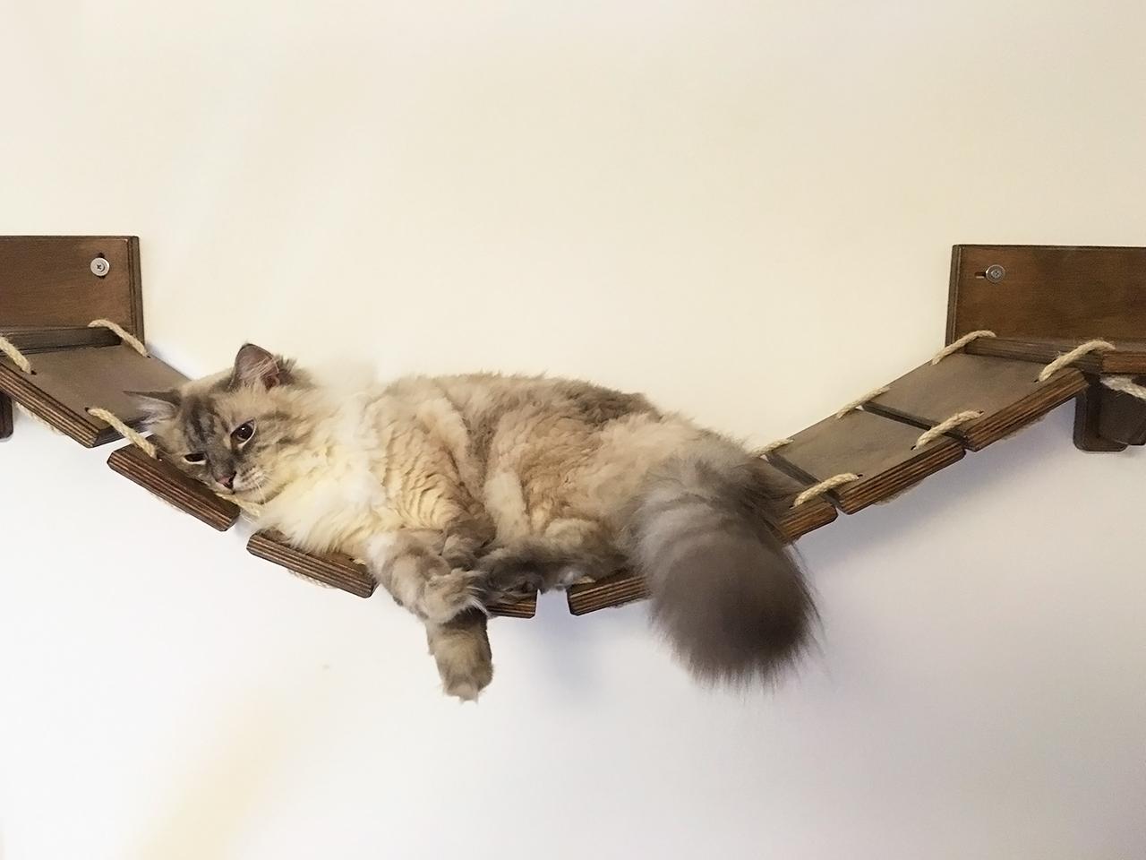 Ponte tibetano per gatti