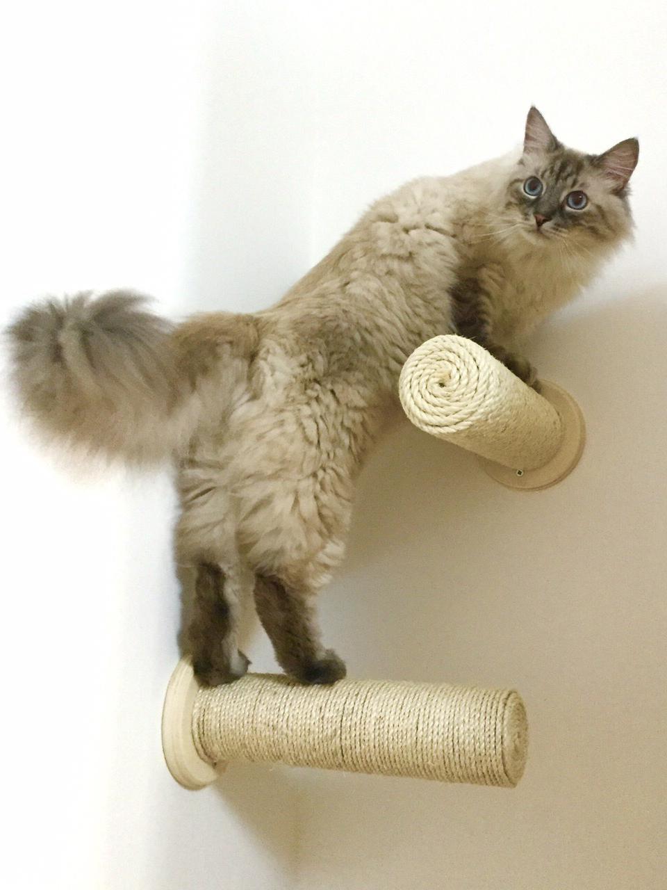 Tiragraffi a muro per gatti artigianale