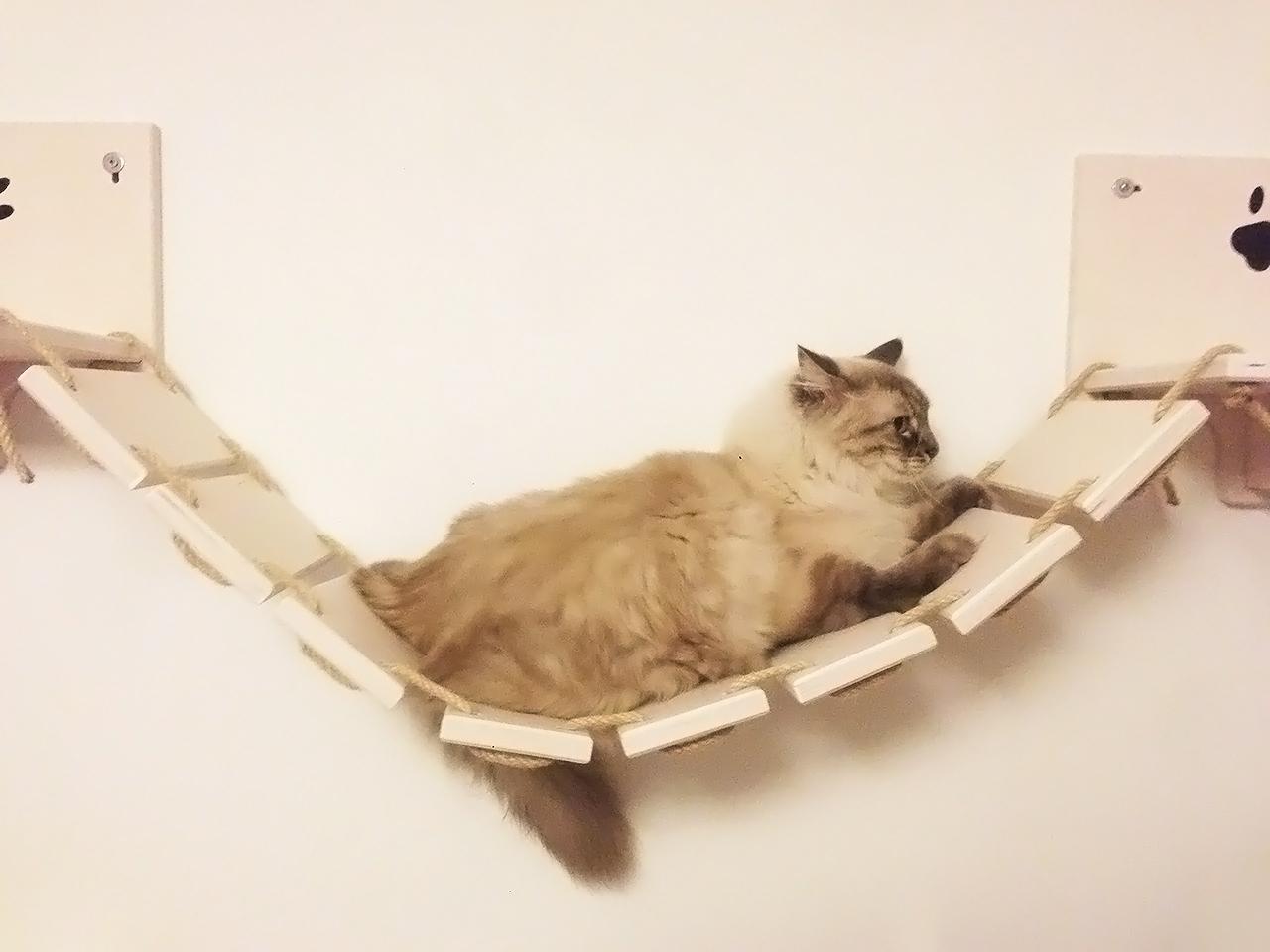 Passerella per gatti artigianale in legno athleticat