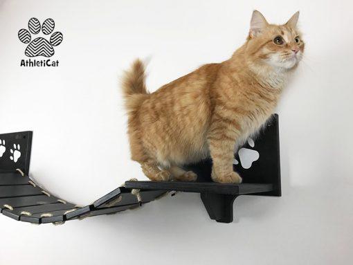 Ponte per gatti nero