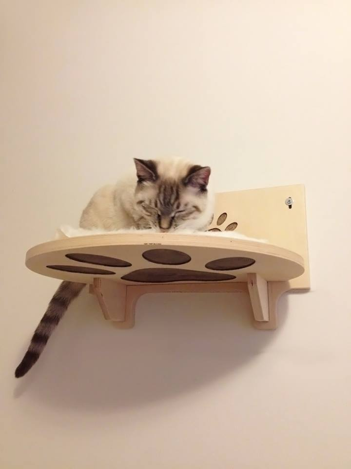 Shelf-for-cats-with-carved-paw