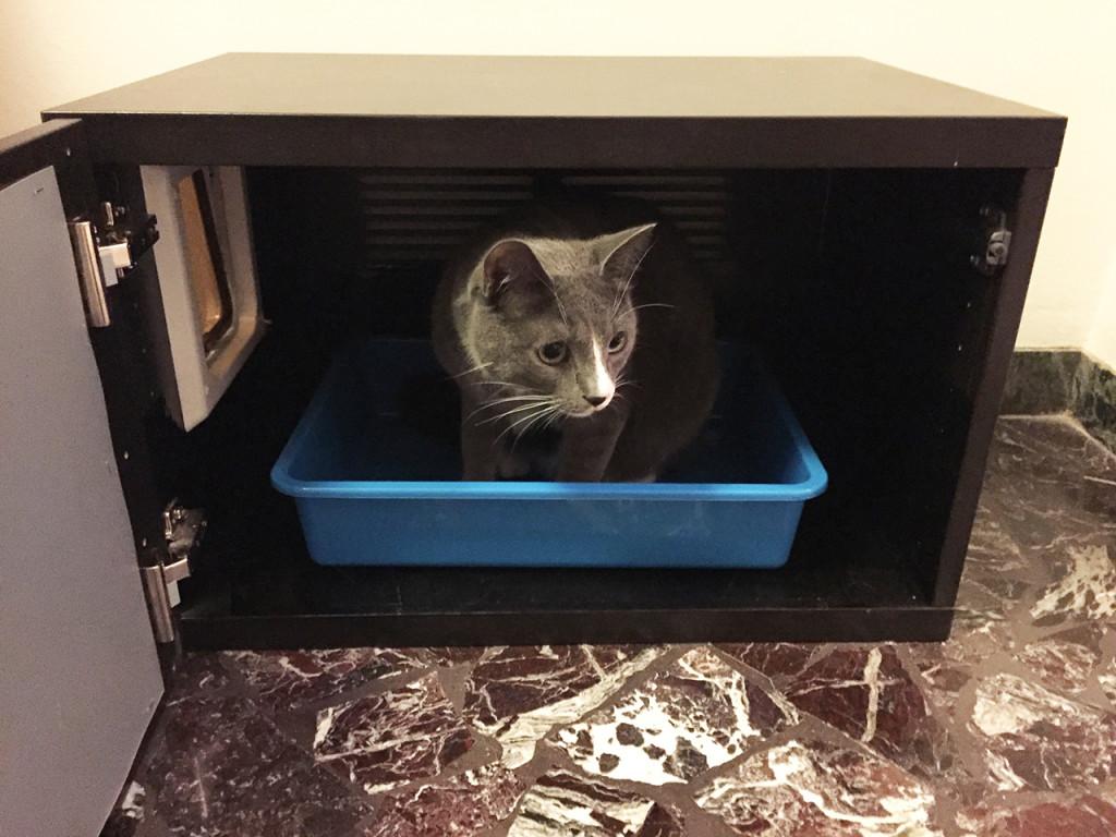 Mobiletto copri lettiera per gatti