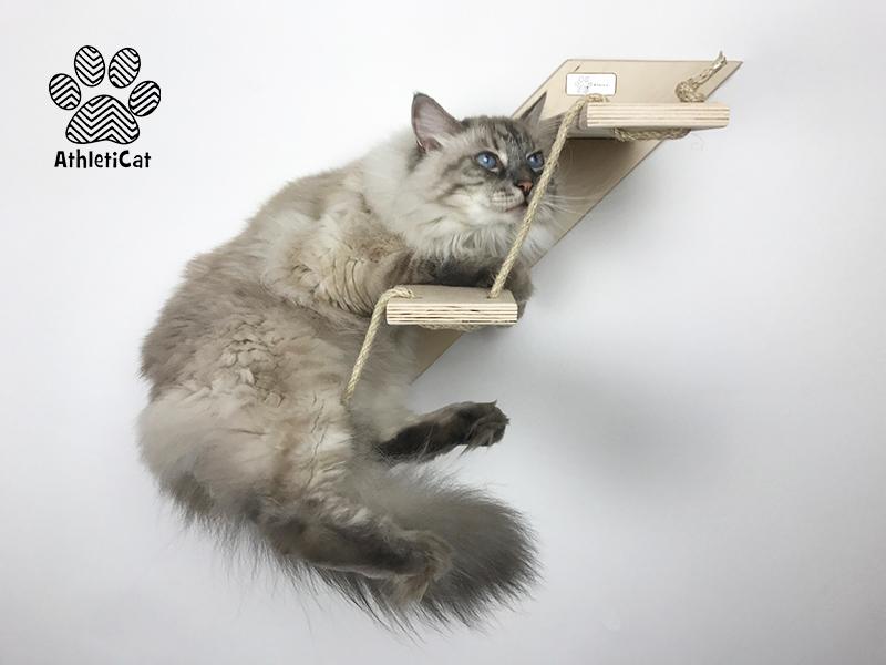 Scala per gatti 3 gradini