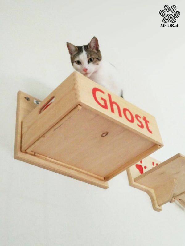 Palestra per gatti artigianale in legno