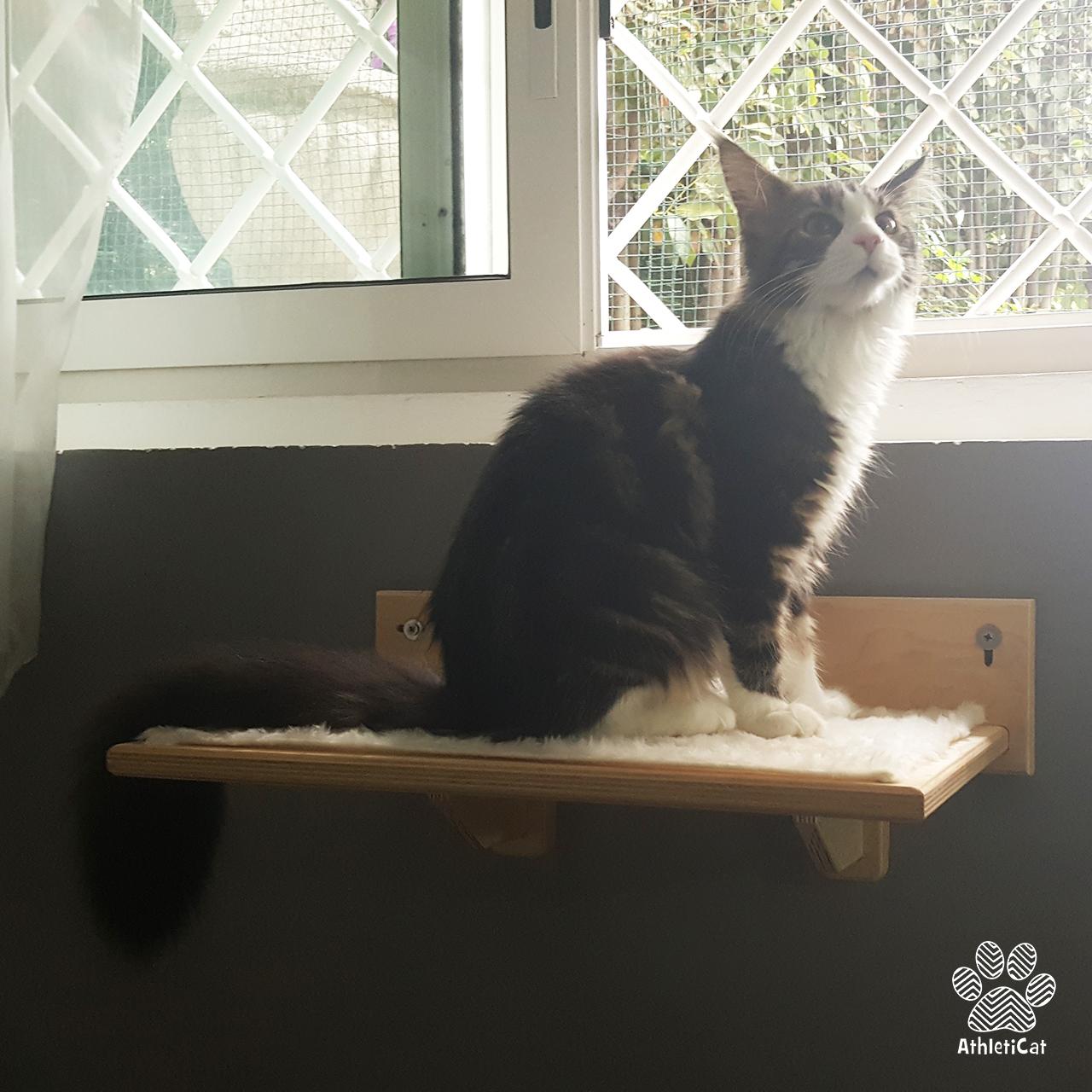 Arredamento-per-gatti-athleticat-4