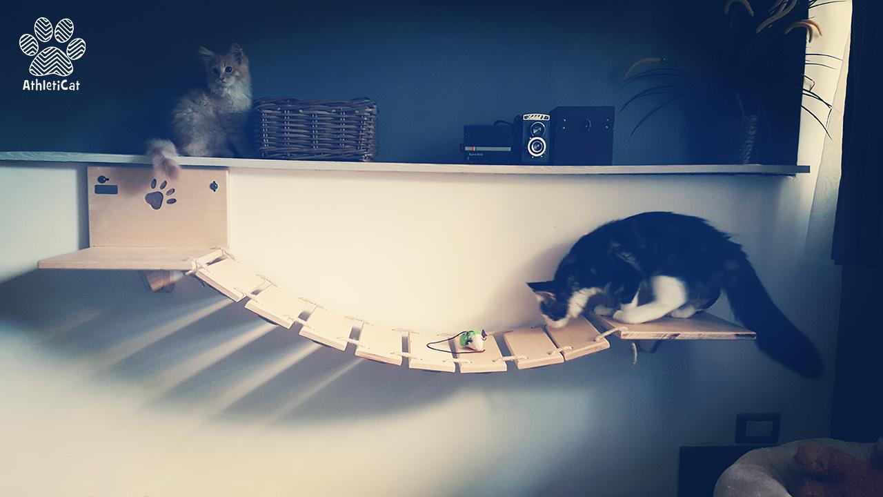 Arredamento-per-gatti-athleticat-6