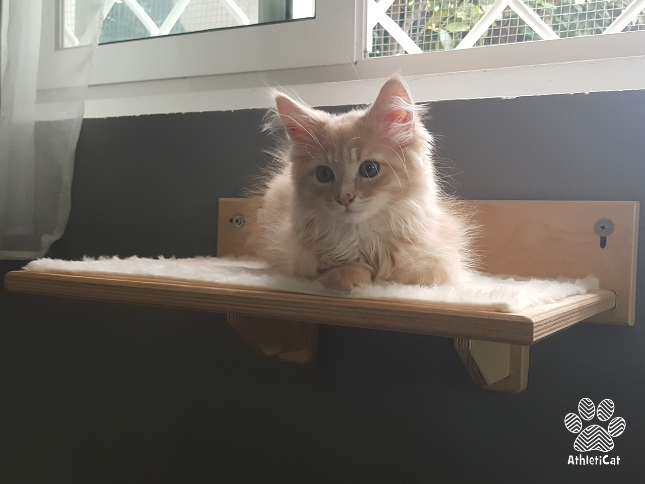wooden furniture elements for cats