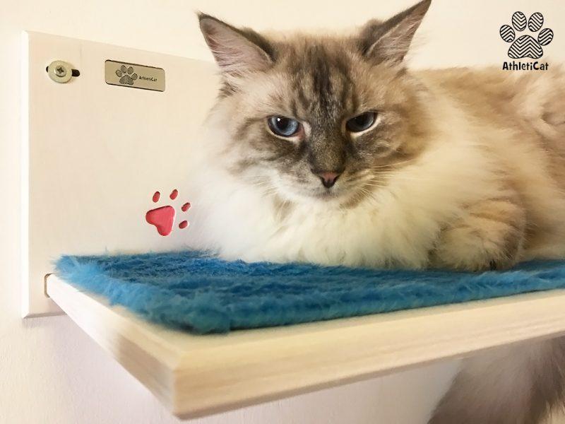 Ripiano per gatti in legno con intagli