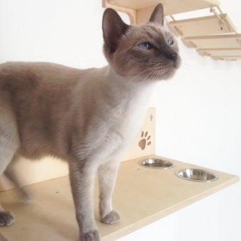 Arredo per gatti in legno