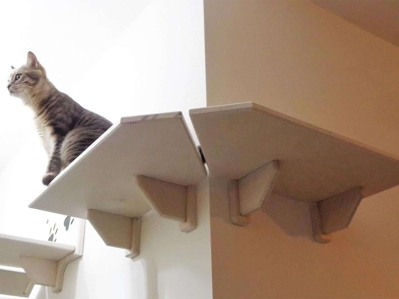 Mensola per gatti ad angolo in legno made in italy for Mensole per gatti ikea