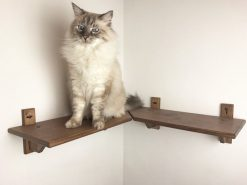 Mensola per gatti angolare