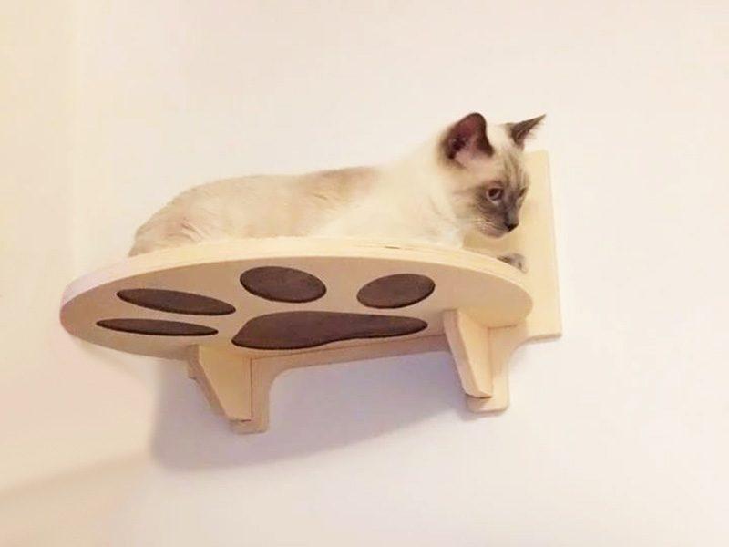 Palestra per i gatti in legno