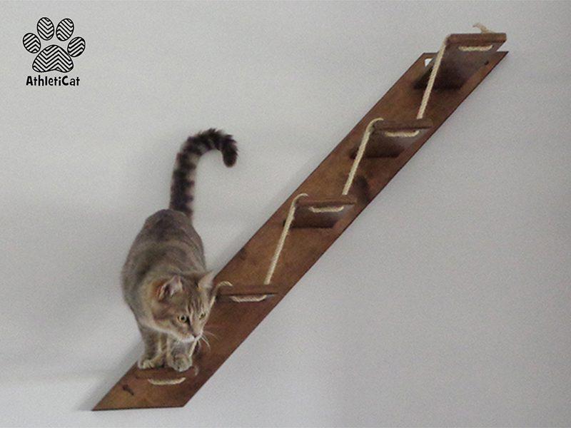 Scaletta per gatti in legno